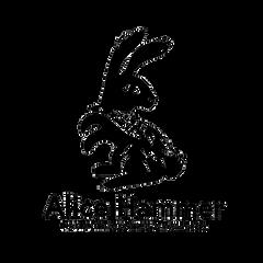 Alice Hammer