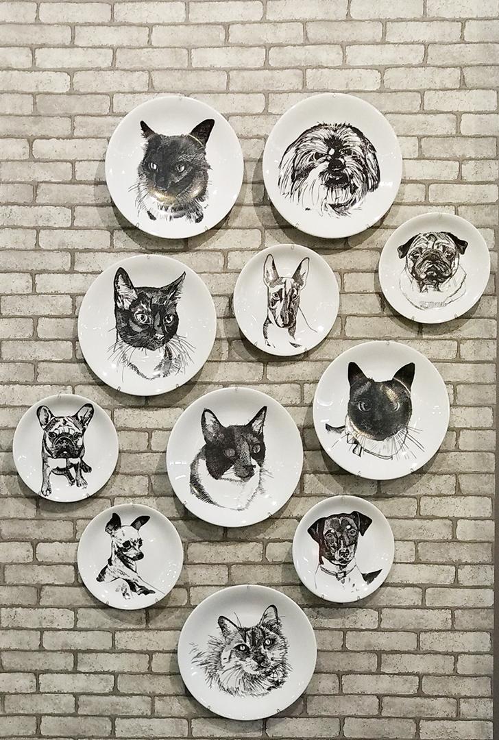Pratos Decorados Coleção Pet Lovers