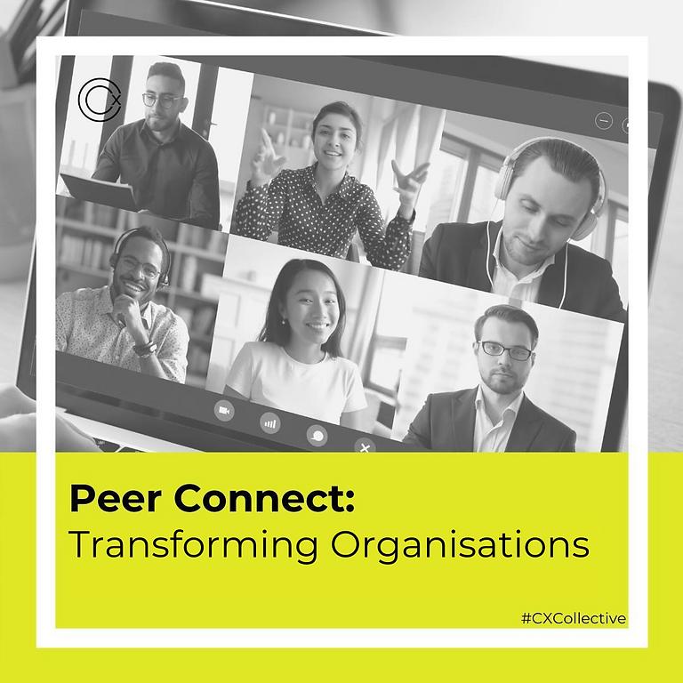 Peer Connect: Transforming Organisations