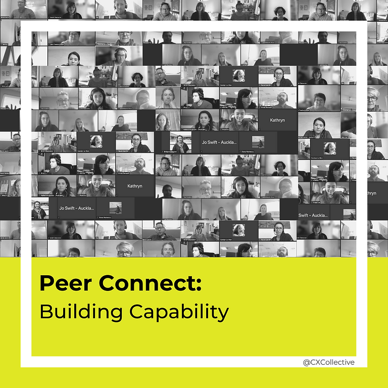 Peer Connect: Building Capability