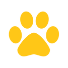 paw print yellow.png