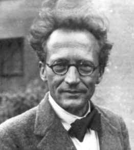 Erwin Schrodinger is credited with the theory behind Schrodinger's backup.