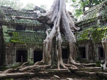 Länderinfo Kambodscha