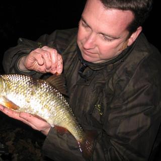 Big Thames Roach