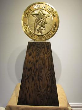Turn Around Award