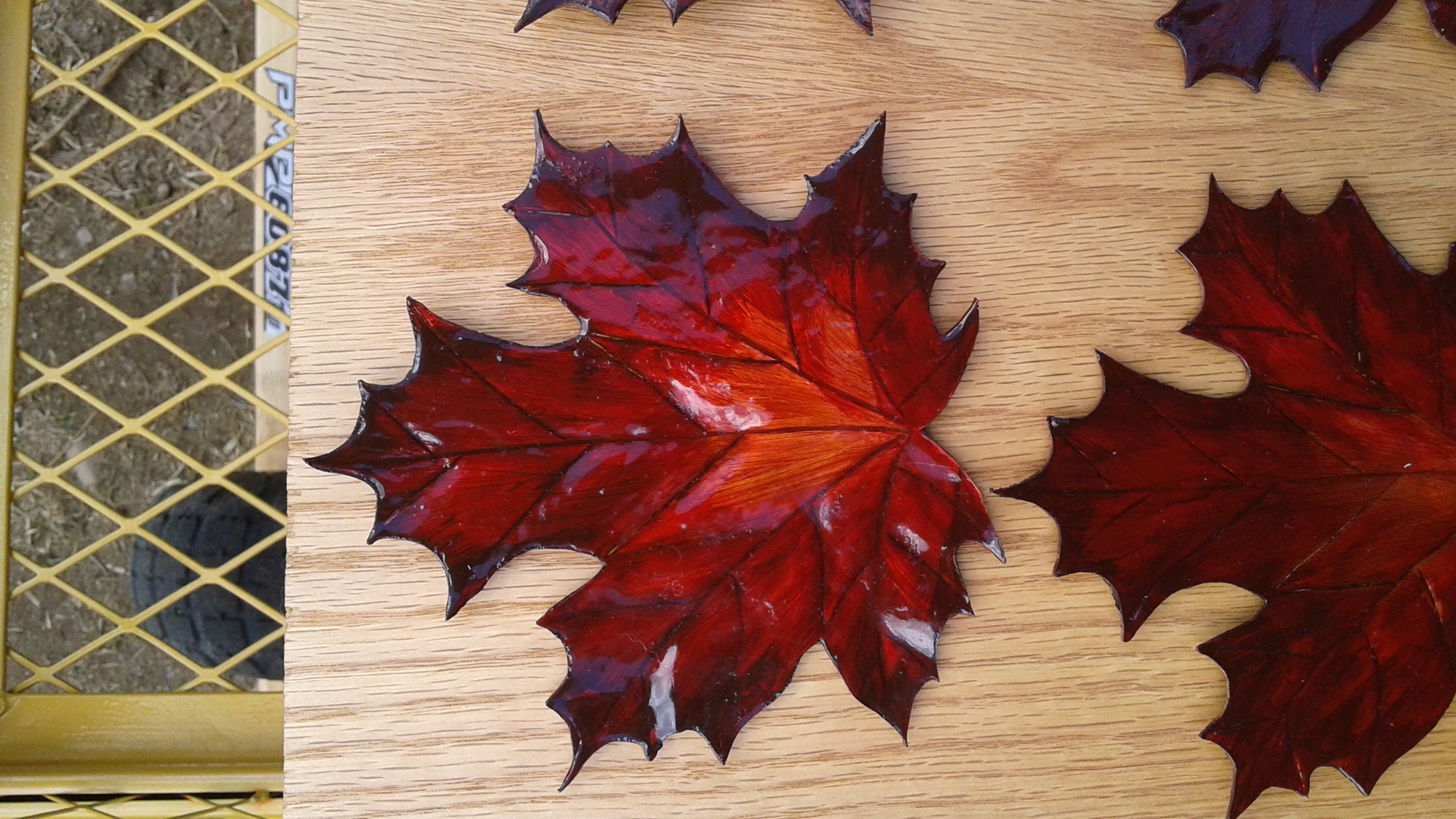 copper maple leaf