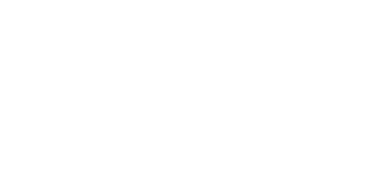 d&s logo_large_white_on_trans_2.png