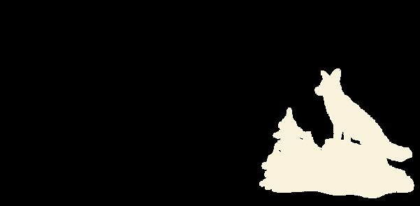 Fox-03.png