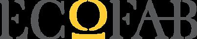 ECOFAB logo - NO R.png