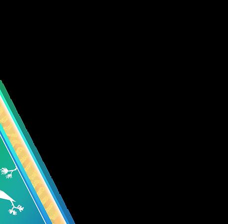 Angle 4