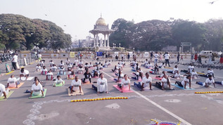 Yoga Stops Traffick 2021!