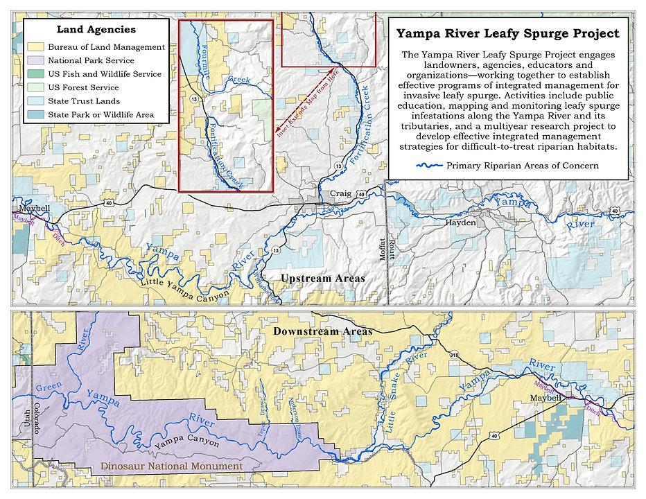 YRLSP Riparian Area Concern.jpg