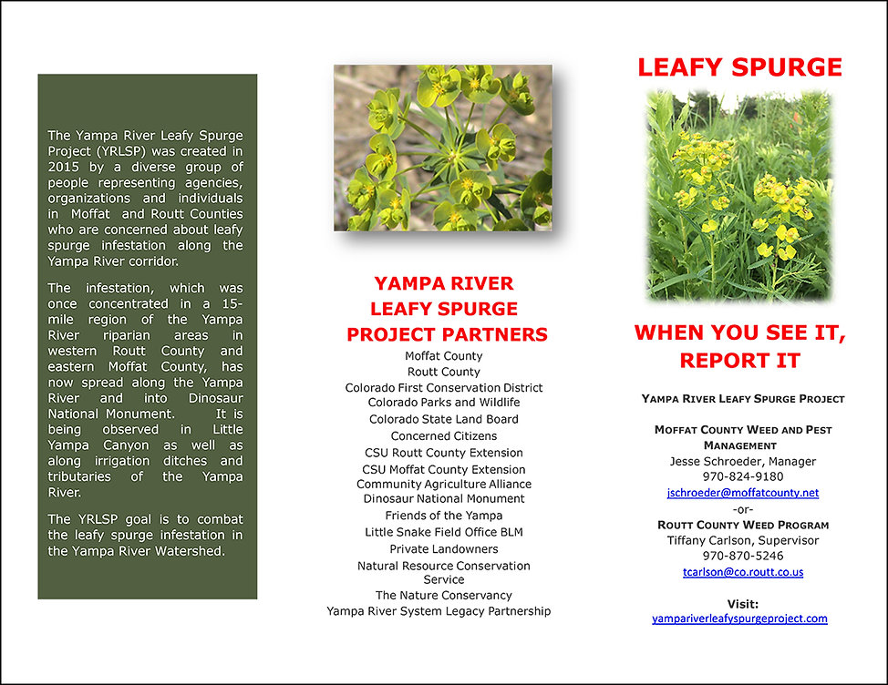 YR Leafy Spurge Brochure 2020-1.jpg