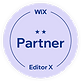 Wix - Pioneer Badge.png