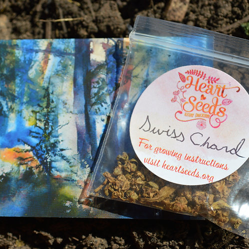 Swiss Chard Seeds & Art Card