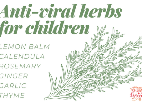 My favorite anti-viral herbs for kids