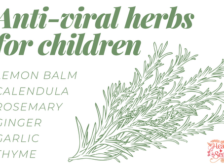 My favorite anti-viral herbs for kids