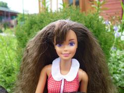 Paint 'N Dazzle Barbie (brunette) 1993