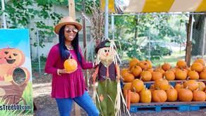 Fall Fun At The Pumpkin Patch