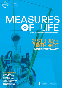 Measures of Life
