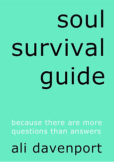 buy soul survival guide