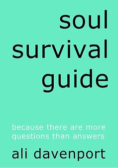 buy soul survival guide