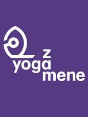 Yzm logo copy 2.jpeg