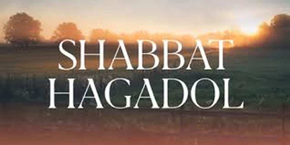 Shabbat morning services March 27  (Shabbat Hagadol)