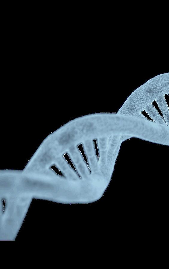 gene bgs.png