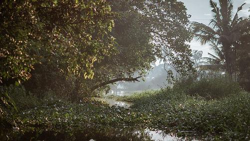 Backwater - Local.jpg