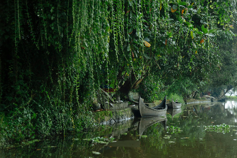 Authentic Alleppey Backwaters.jpg