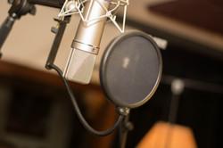 Feuilles de Roots - Studio