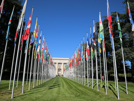 MWF United Nations Visit - Geneva