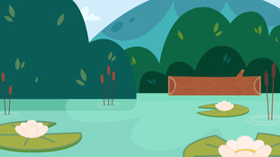 Old McDonald Duck Pond