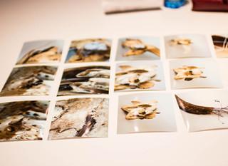 ¿Porqué estudiar un diplomado de fotografía con Luz Viajera?