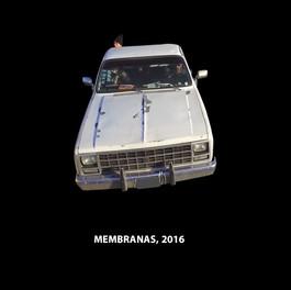 membranas.jpg