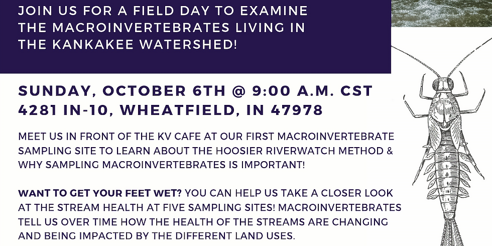 Dive Deep Into the Health of Your Streams!