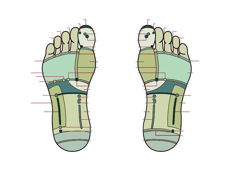 Reflexology Foot Chart, Reflexology Foot Map, Reflexology map of feet, reflexology London