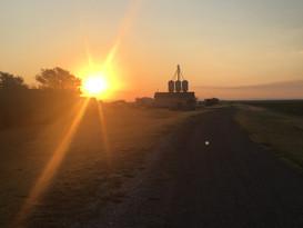Sunrise Farm INsta.JPG