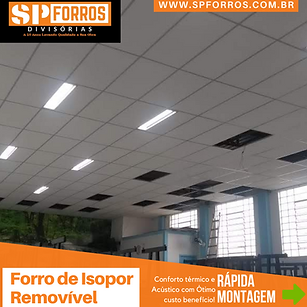 spforros-isopor-lapa.png
