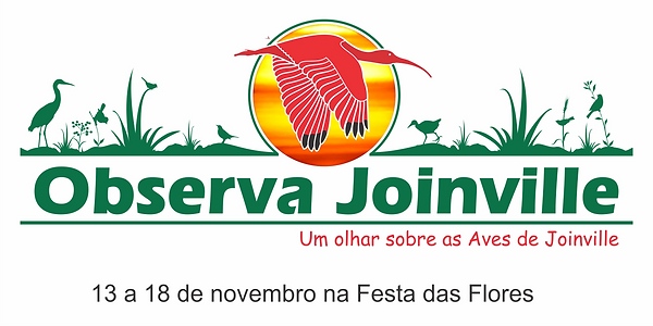 observa-joinville.png