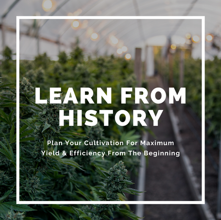 Learn From History: Plan Your Cultivation For Maximum Yield & Efficiency From The Beginning