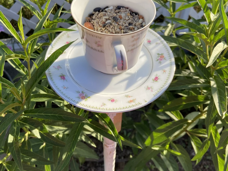 Homemade Teacup Bird Feeder