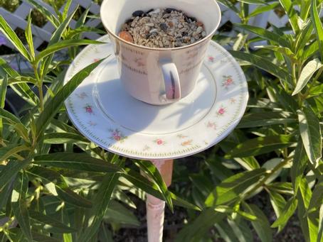 Homemade Teacup Bird Feeder