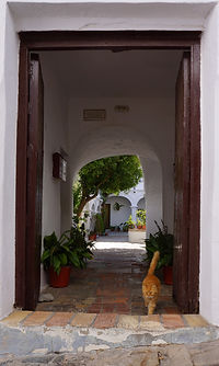 """The Widows' House"", Vejer"