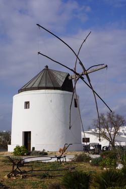Windmill Park / Parque de molinos