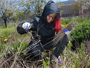 MMSD to award $1.5 million in grants for green infrastructure