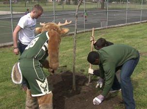 American Transmission Company, Milwaukee Bucks host first tree planting ceremony at McGovern Park