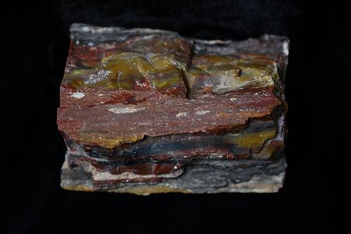 Petrified Wood (Arizona)