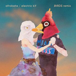 AFROBETA KIF BIRDS